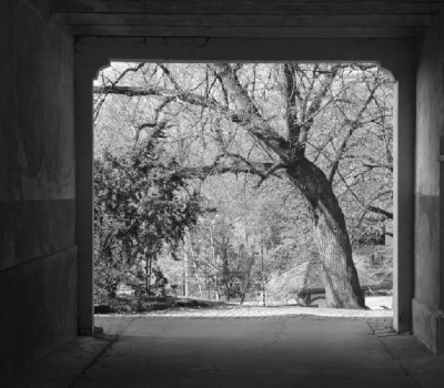 Blick durchs Tor